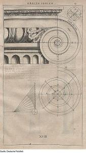 340px-Fotothek_df_tg_0003910_Architektur_^_Säule_^_ionische_Ordnung_^_Kapitell