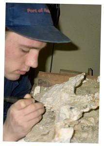 Preparacja czaszki tarbozaura